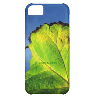 Berry leaf and Autumn colors. Cover For iPhone 5C