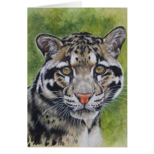 Berry's Clouded Leopard Greeting Cards