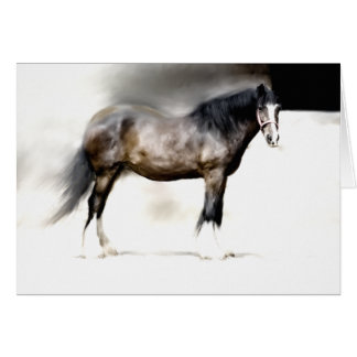 BERTHA Biggest SHIRE HORSE Card