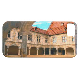 Besançon,ancient courtyard case for the iPhone 5