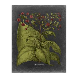 Besler Dramatique I Acrylic Print