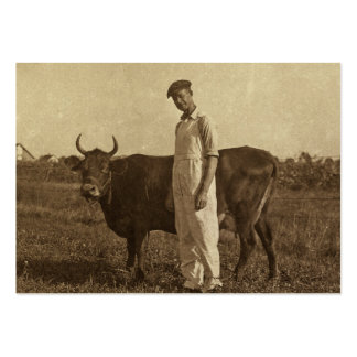 Bessie the Cow and her Farmer. Pack Of Chubby Business Cards