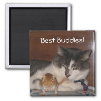 "Best Buddies 2"" Magnet"