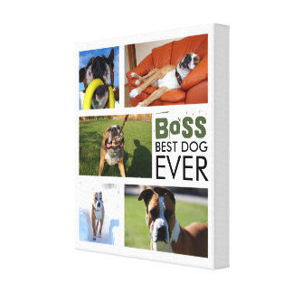 Best Dog Ever Photo Collage Canvas Canvas Print