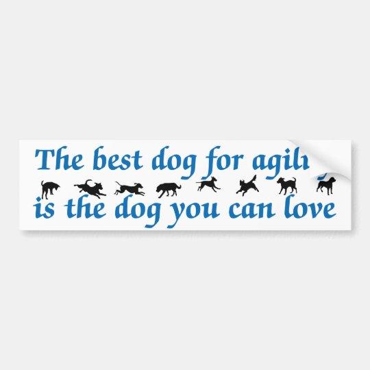 Best Dog For Agility Bumper Sticker