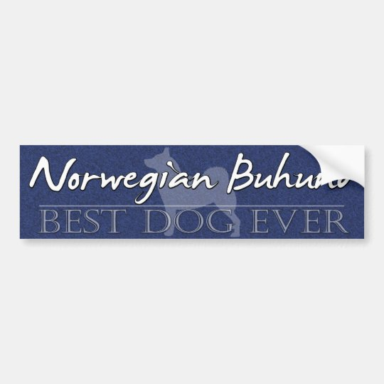 Best Dog Norwegian Buhund Bumper Sticker