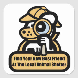 Best Friend At Animal Shelter Square Sticker