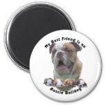 Best Friend Aussie Bulldog 2 Fridge Magnet