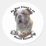 Best Friend Aussie Bulldog 2 Round Stickers