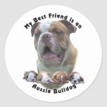 Best Friend Aussie Bulldog 2 Sticker