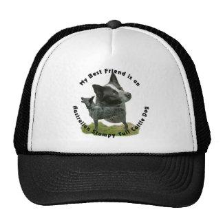 Best Friend Australian Stumpy Tail Cap