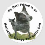 Best Friend Australian Stumpy Tail Classic Round Sticker