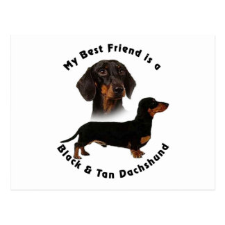 Best Friend Black Tan Dachshund Postcard