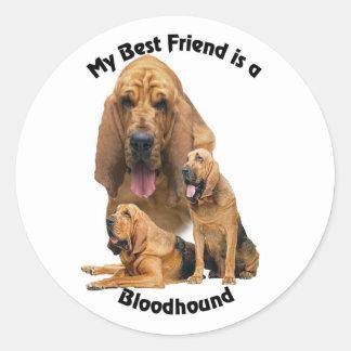 Best Friend Bloodhound Classic Round Sticker