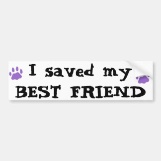 Best Friend Bumper Sticker