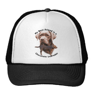 Best Friend Choc Lab2 Hats
