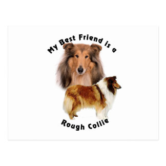 Best Friend Rough Collie Postcard