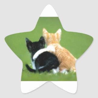 Best Friends, Brothers, Sisters Star Sticker