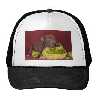 Best friends cap