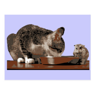 Best Friends Cat Mouse Sharing Food Bowl Postcards