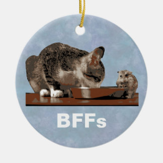 Best Friends Cat & Mouse Sharing Food Bowl Round Ceramic Decoration