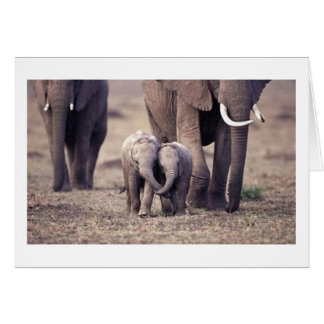 Best Friends Elephant Card