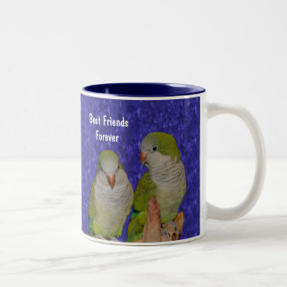 Best Friends Forever Cute Bird Mug