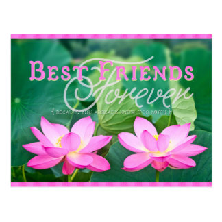 Best Friends Forever Gorgeous Pink Lotus Pair Postcard