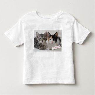 Best Friends Kittens Mug Tee Shirt
