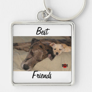 Best Friends Silver-Colored Square Key Ring