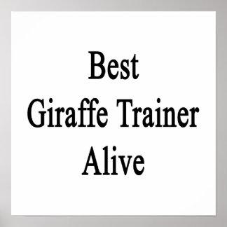 Best Giraffe Trainer Alive Posters
