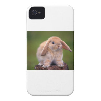 Best Long-Eared Bunny Buddy Case-Mate iPhone 4 Cases