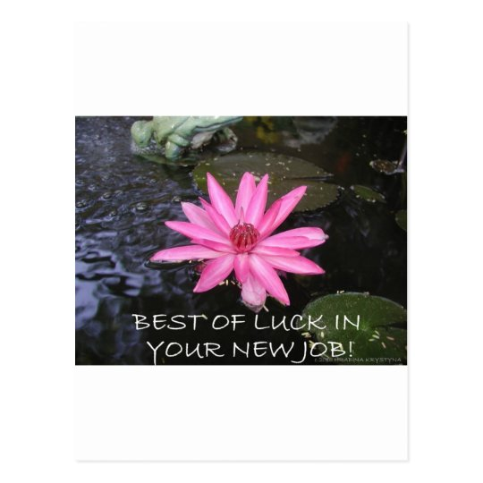 BEST OF LUCK IN YOUR NEW JOB POSTCARD
