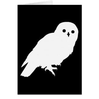 Best Price White Barn Owl Card