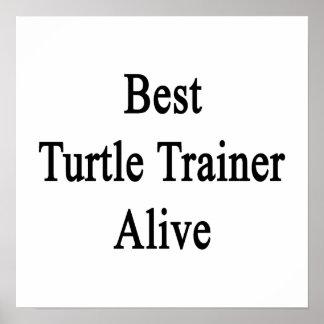 Best Turtle Trainer Alive Poster