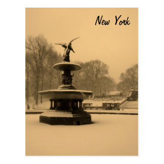 Bethesda Fountain in Winter Postcard