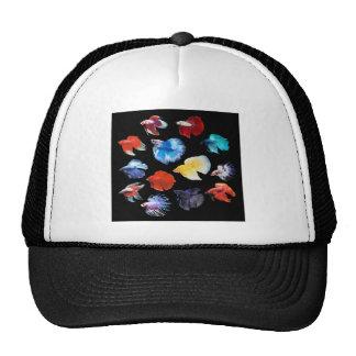 Betta 2 トラッカー帽子