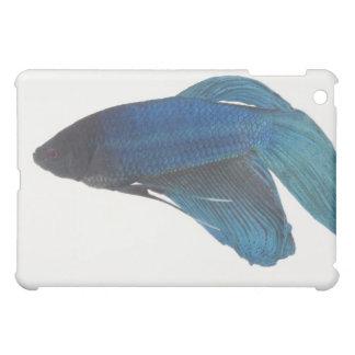 Betta Fish or Male Blue Siamese Fighting Fish iPad Mini Case