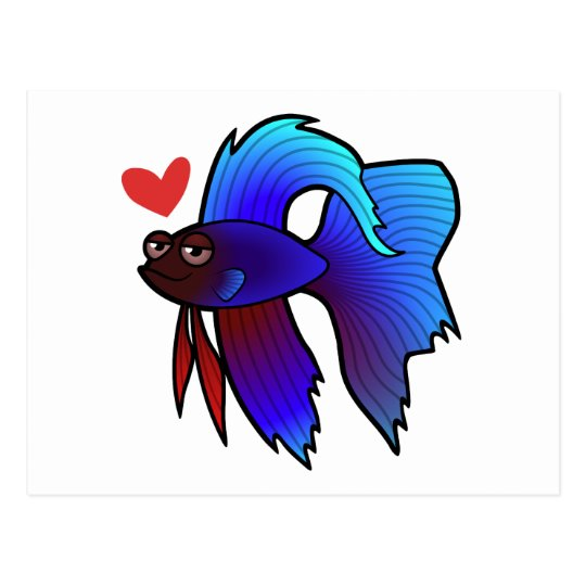 Betta Fish / Siamese Fighting Fish Love Postcard