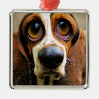 Betty Bloodhound Silver-Colored Square Decoration