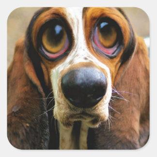 Betty Bloodhound Square Sticker