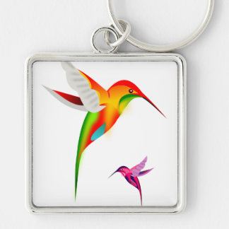 Beutiful Hummingbirds, Colibri Key Ring