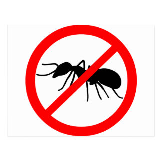 Beware, ants! postcard