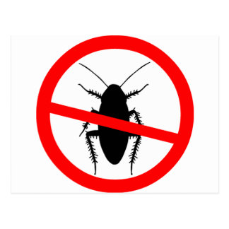 Beware Cockroaches Postcard
