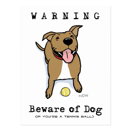 Beware of Dog (if you're a tennis ball) Postcard