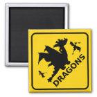 Beware of Dragons Warning Sign Magnet