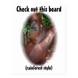 Beware of Facial Hair - rainforest style Post Card
