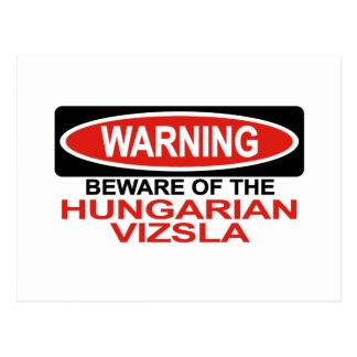 Beware Of Hungarian Vizsla Postcard