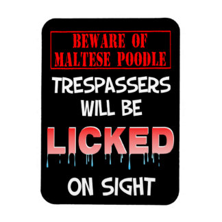"""Beware of Maltese Poodle"" Magnet (Black)"