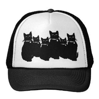 Beware the Black Cat Trucker Hats